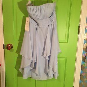 Strapless Sky Blue Bridesmaid's Dress